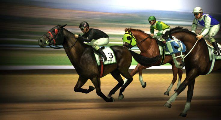 Horse track gambling empress casino hotel